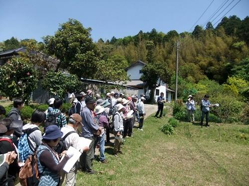 2013.4.27 ふるさと訪ね歩き(かるた会) 093 (4)