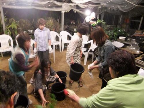 2013.5.14パッションフルーツの植え付けく(やまびこ学級) 014 (4)