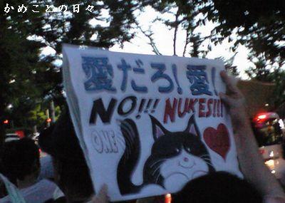 CA391965-cat.jpg