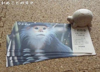 P1510227-ticket.jpg
