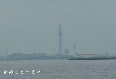 P1510746-sky.jpg