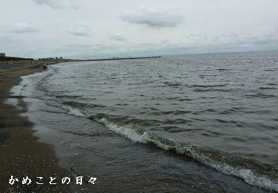 P1510763-sea.jpg
