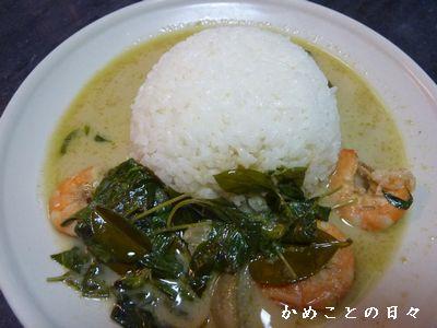 P1530187-curry2.jpg