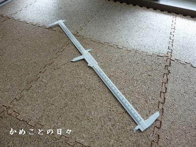 P1530418-ru.jpg