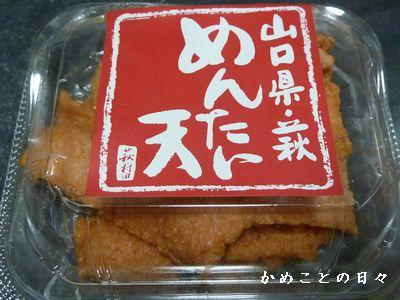 P1540705-yama.jpg