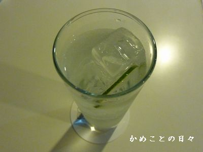 P1560951-gin.jpg