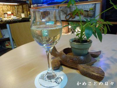 P1570551-vin.jpg