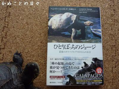 P1590186-book.jpg