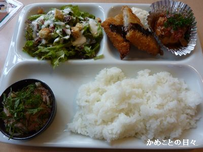 P1620318-lunch.jpg