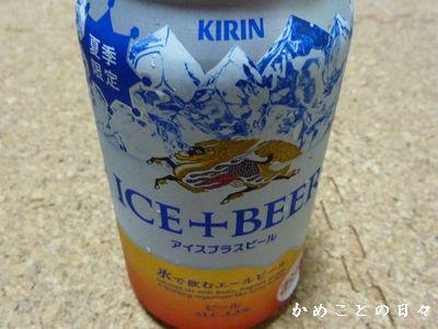 P1620473-beer.jpg