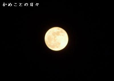 P1620650-moon.jpg