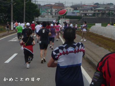 P1620920-kyusuika.jpg
