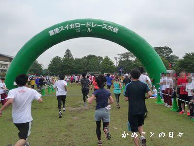 P1620933-goal.jpg