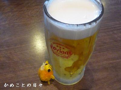 P1630042-beer.jpg