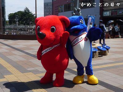 P1630048-chi.jpg
