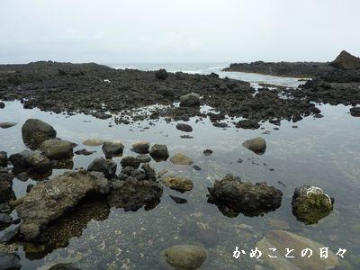 P1630670-beach.jpg