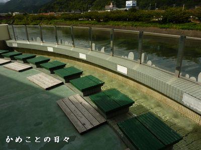 P1630719-yu.jpg