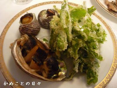 P1640341-kai.jpg