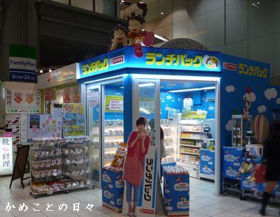 P1650146-yama.jpg