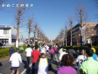 P1650271-road.jpg