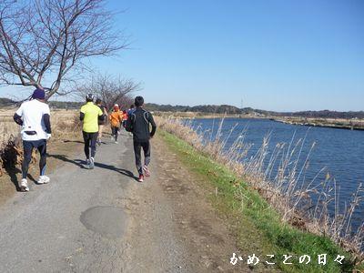 P1650287-kawaberi.jpg