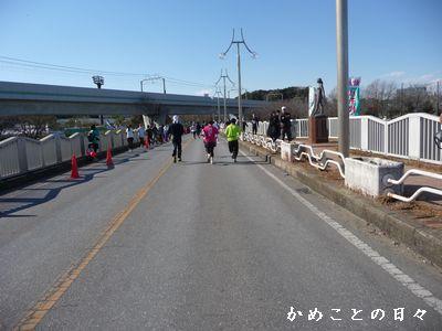 P165029-hashi.jpg