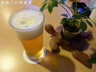 P1650481-beer.jpg