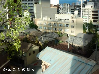 P1650954-machi.jpg