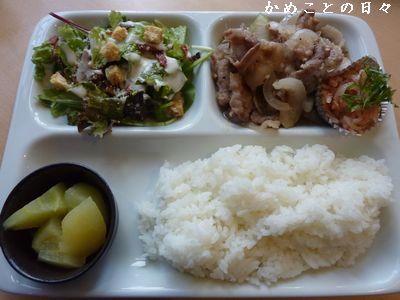 P1660437-lunch.jpg