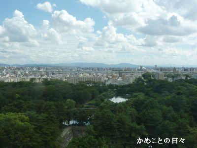 P1660847-shiro.jpg