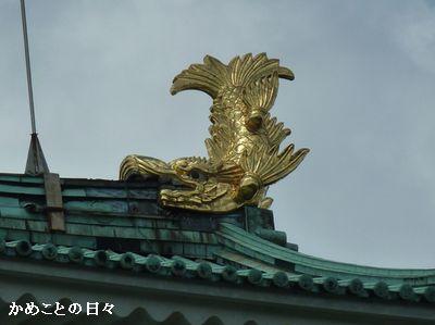 P1660850-kinshachi.jpg