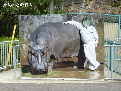 P1660920-kaohame.jpg