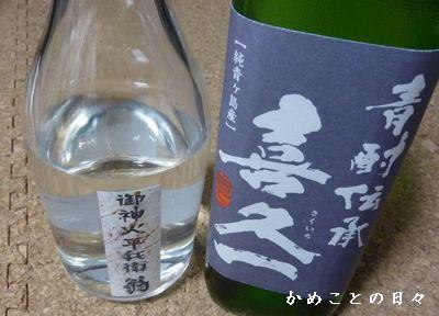 P1680048-sake.jpg