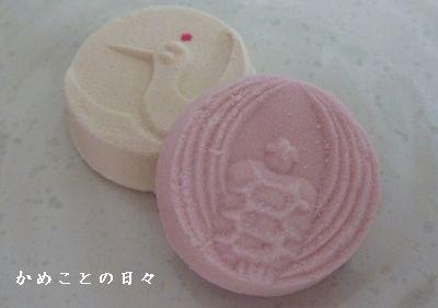 P1680848-wasan.jpg