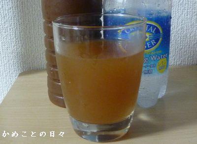 P1690571-gin.jpg