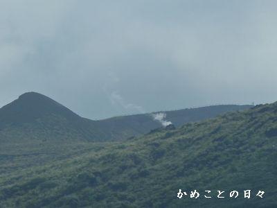 P1690915-sui.jpg