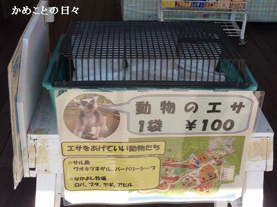 P1700018-food.jpg