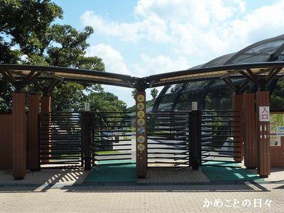 P1700022-zoo.jpg