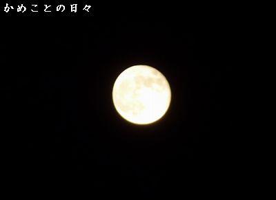 P1700361-moon.jpg