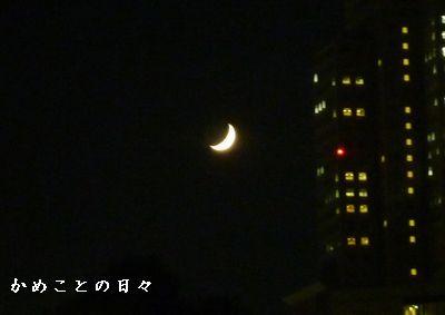 P1720323-moon.jpg