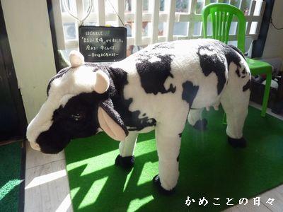 P1750485-cow.jpg