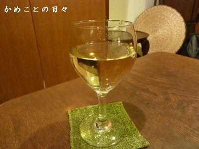 P1750760-vin.jpg