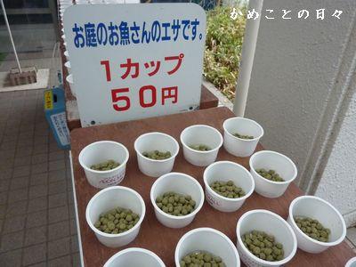 P1780125-cup.jpg