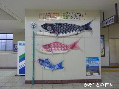 P1780464-nobori.jpg