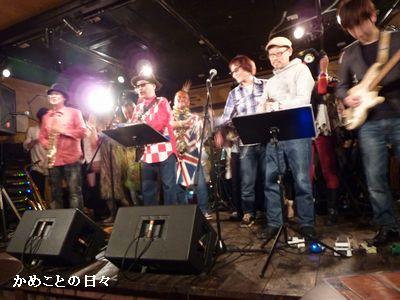 P1790477-live.jpg