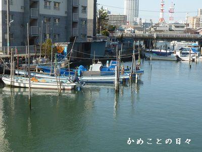 P1820303-shi.jpg