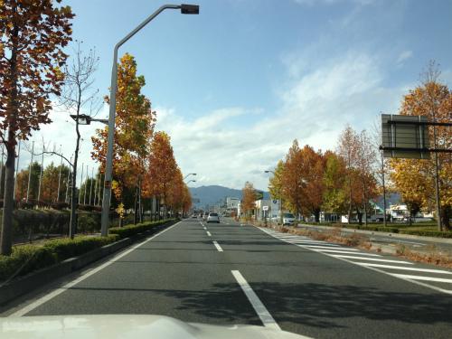 写真 2012-11-06 12 32 42