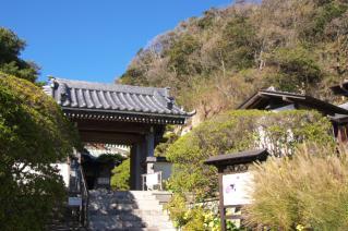 浦賀道(鎌倉):安養院