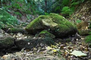 浦賀道(鎌倉):名越切通途上の岩