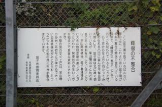 逗子・鐙摺の露頭解説-2